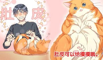 如何让你的橘猫减肥第3话 减肥游说
