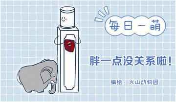 孤独的小象第7话 因为是冬天鸭!