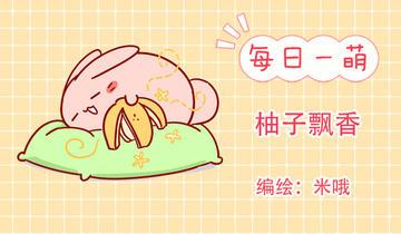 肥喵与兔纸第220话 柚子飘香