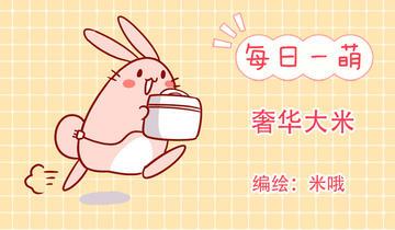 肥喵与兔纸第226话 奢华大米