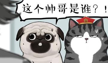 吾皇巴扎黑第173话 少年→美男?!
